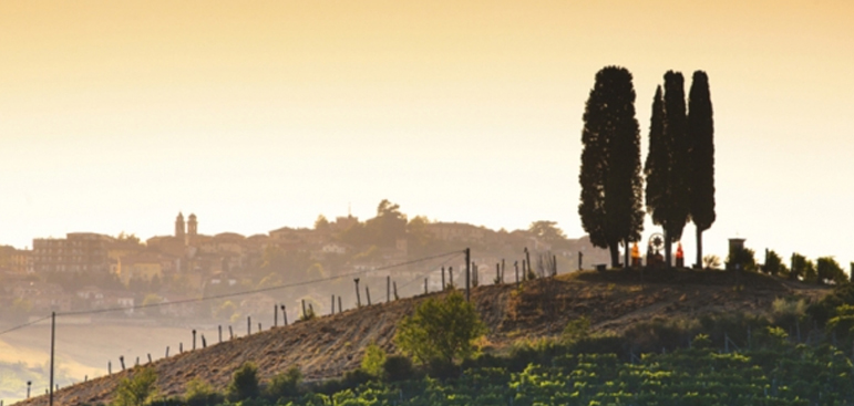 Private Tuscany and Piedmont with John Szabo