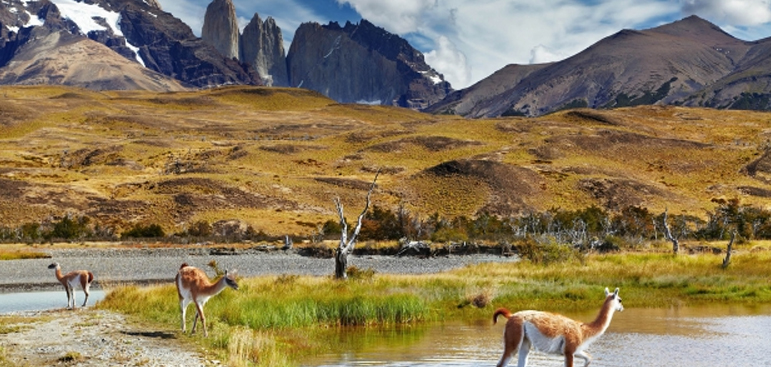 Travel to Chile: A Land of Earth, Fire and Ice