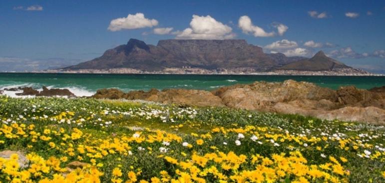 Cape Town's Best Beaches