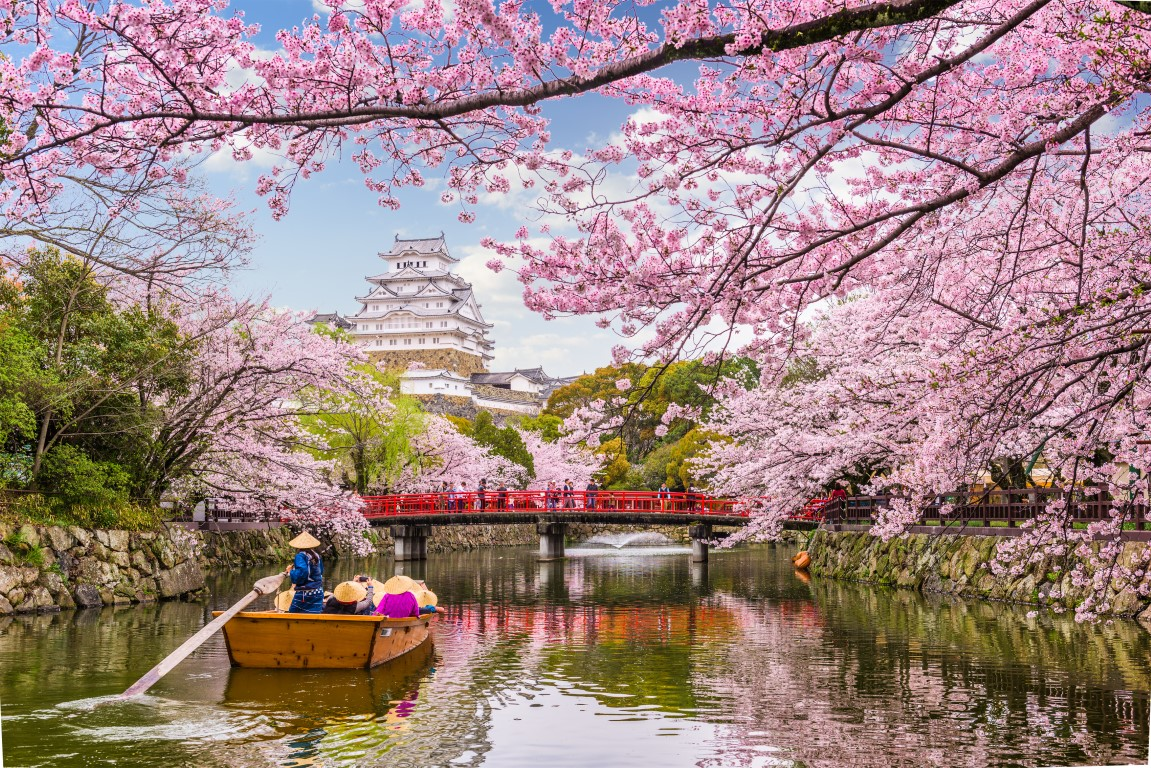 Planning to visit Japan? Know the best time to visit.
