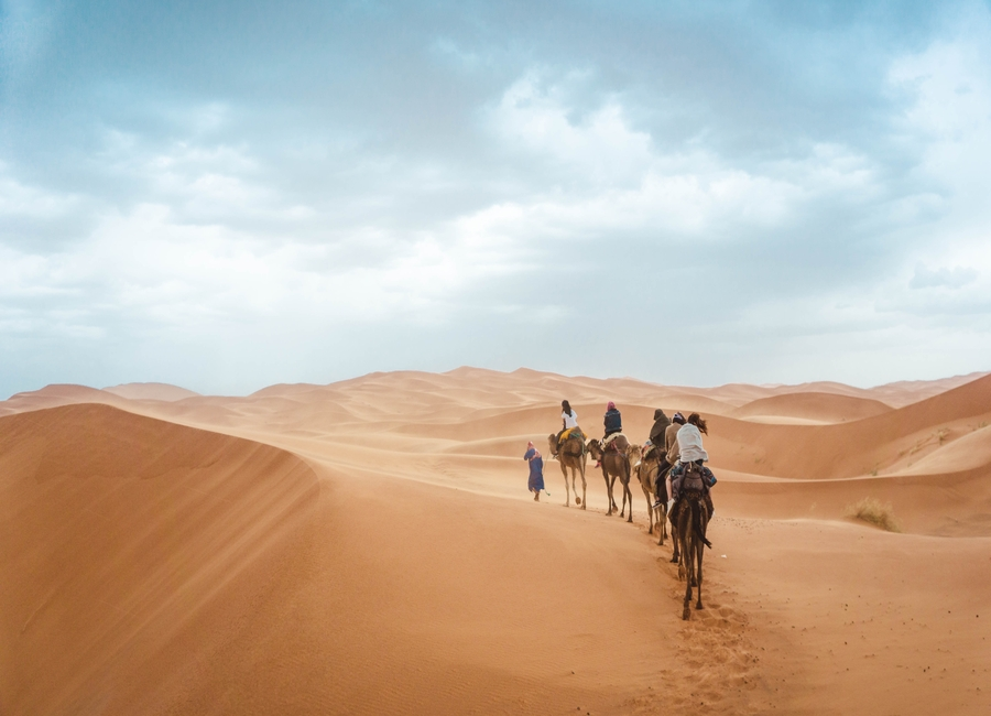 Benefits of Traveling With Small Group Tours