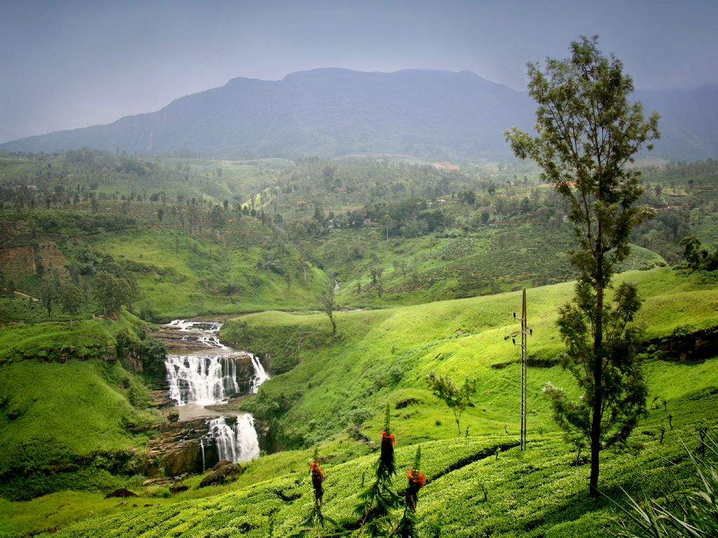 What Makes Sri Lanka the Best Destination for Culture and Wildlife Lovers?