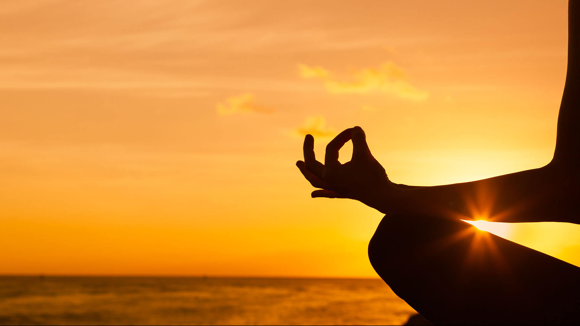 Yoga The Healing Touch | Indus Travel