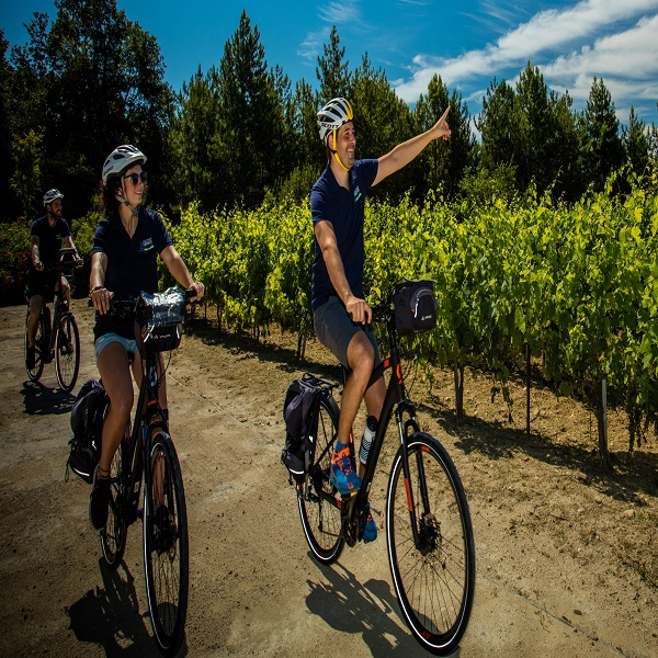 Provence Classic Cycling Tour