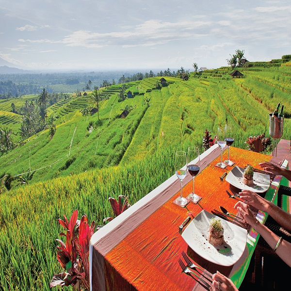 Bali Lifestyle And Retreat
