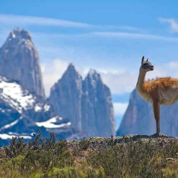 Highlights Of Chile