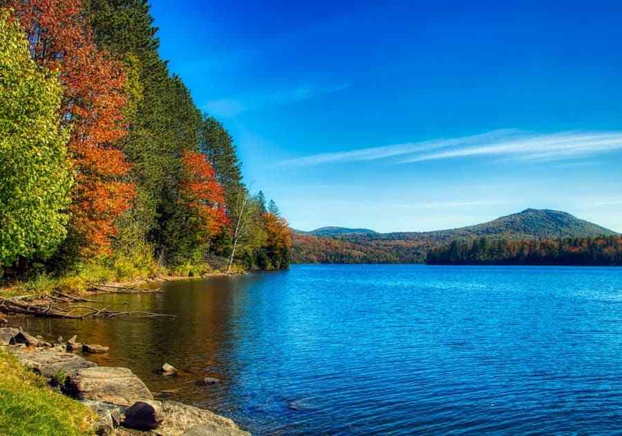 Mollys Fall Pond State Park Vermont